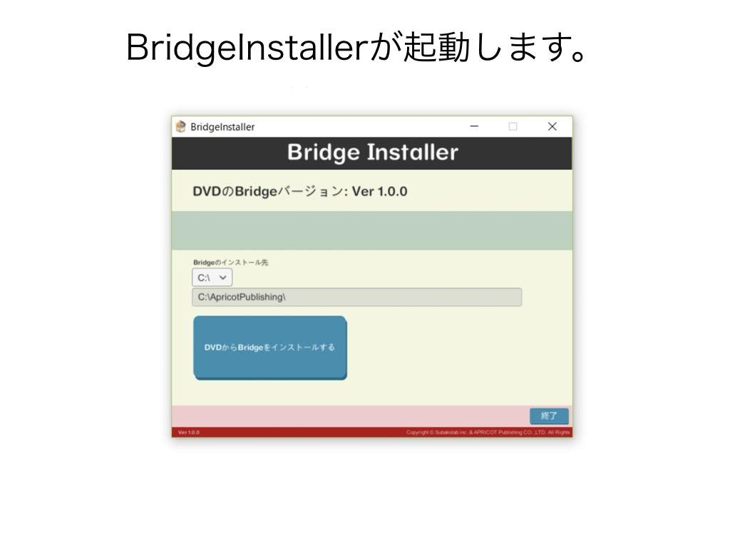 BRIDGE007