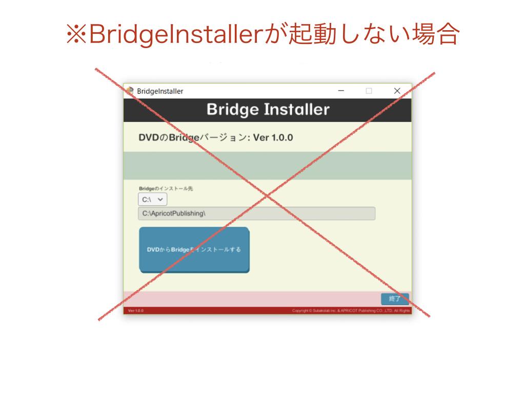 BRIDGE008