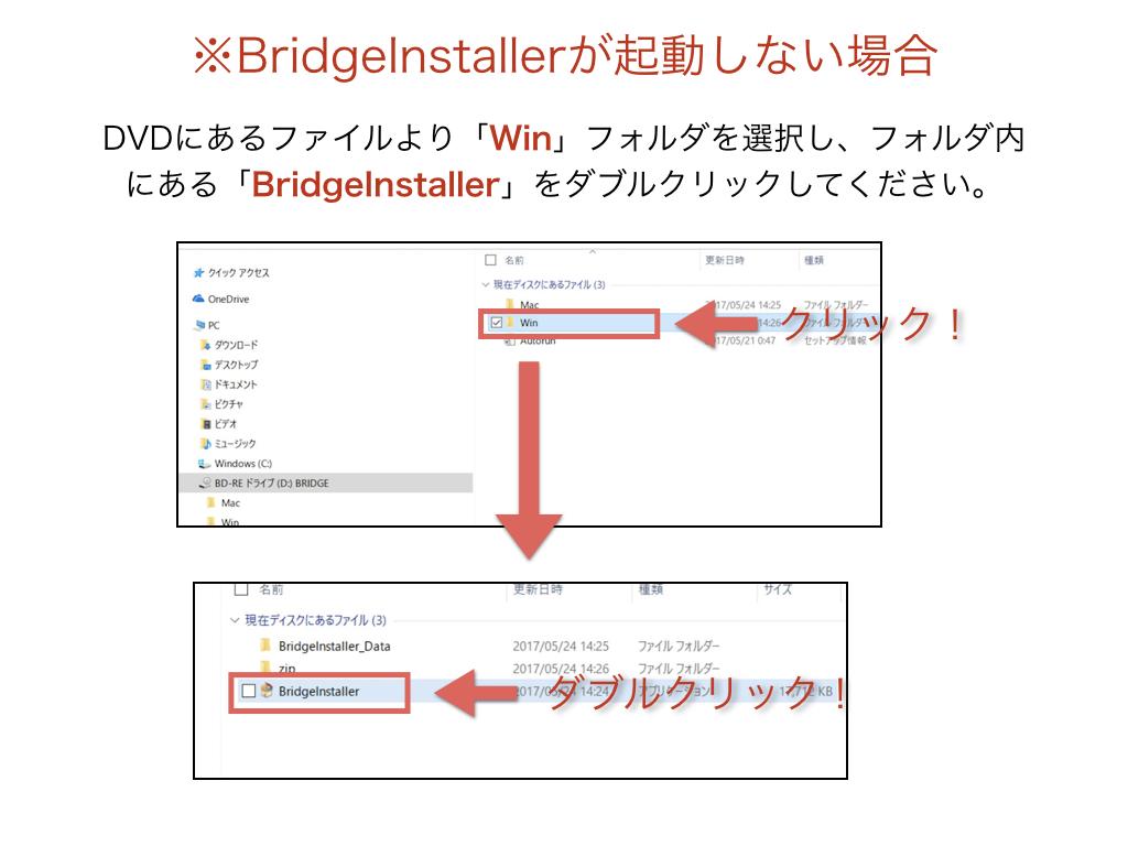 BRIDGE010