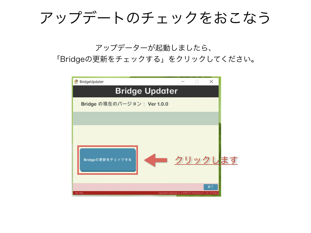 BRIDGE017