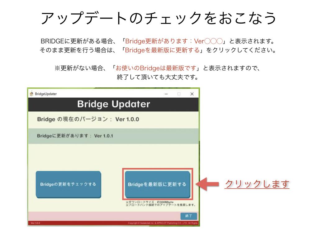 BRIDGE018
