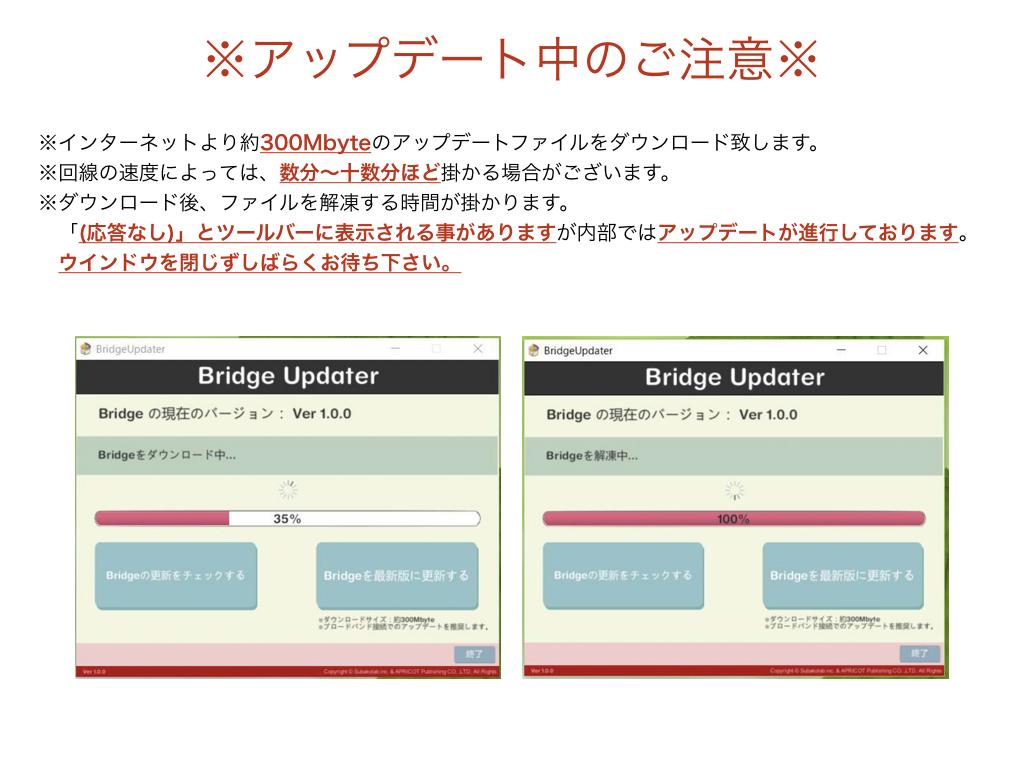 BRIDGE019