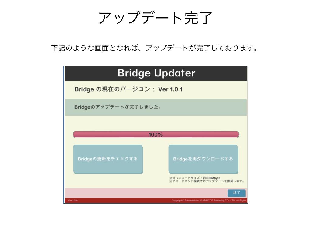 BRIDGE020